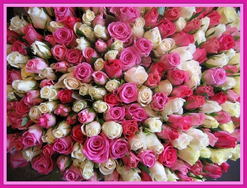 Поздравительные открытки с цветами ко дню рождения